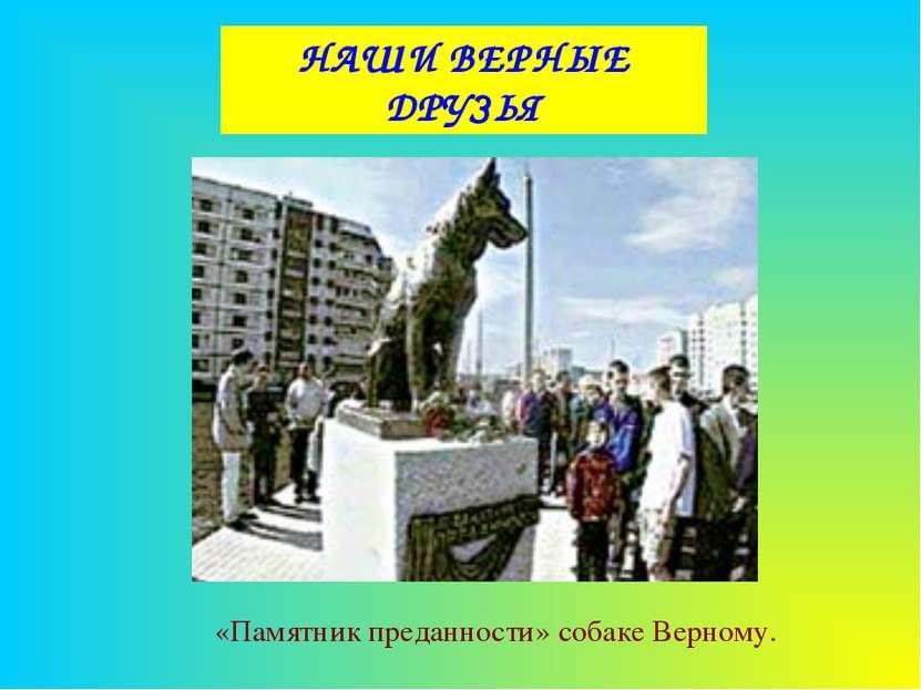 НАШИ ВЕРНЫЕ ДРУЗЬЯ «Памятник преданности» собаке Верному.