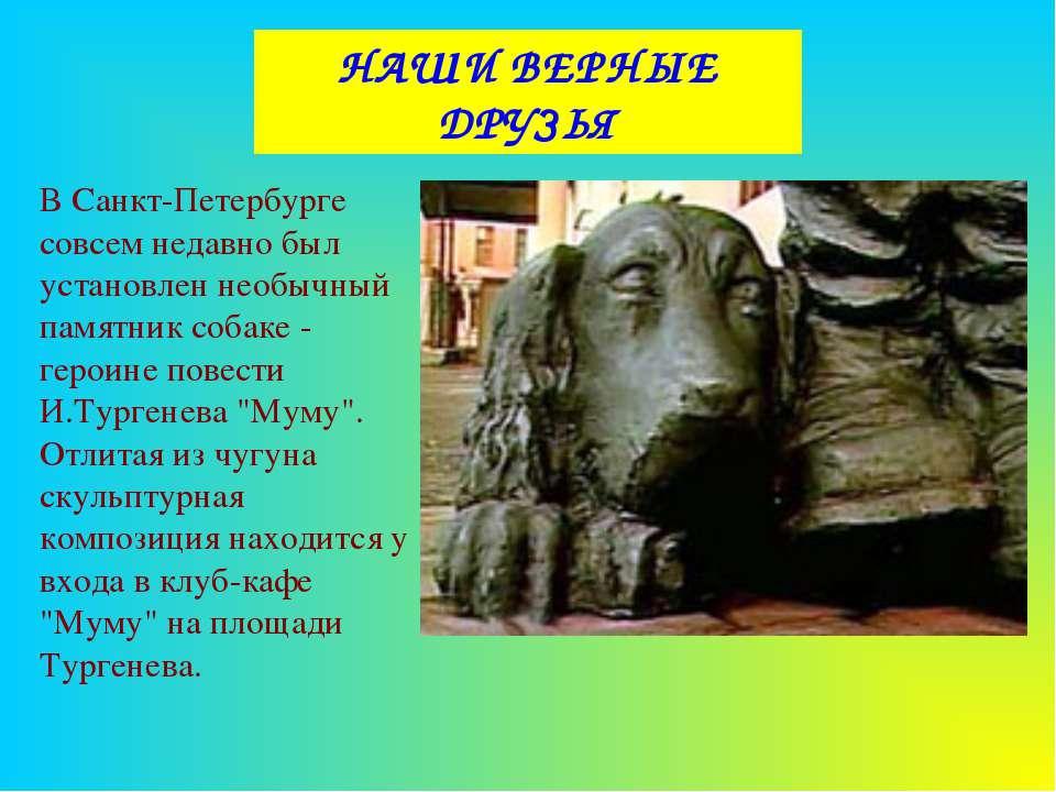 НАШИ ВЕРНЫЕ ДРУЗЬЯ В Санкт-Петербурге совсем недавно был установлен необычный...