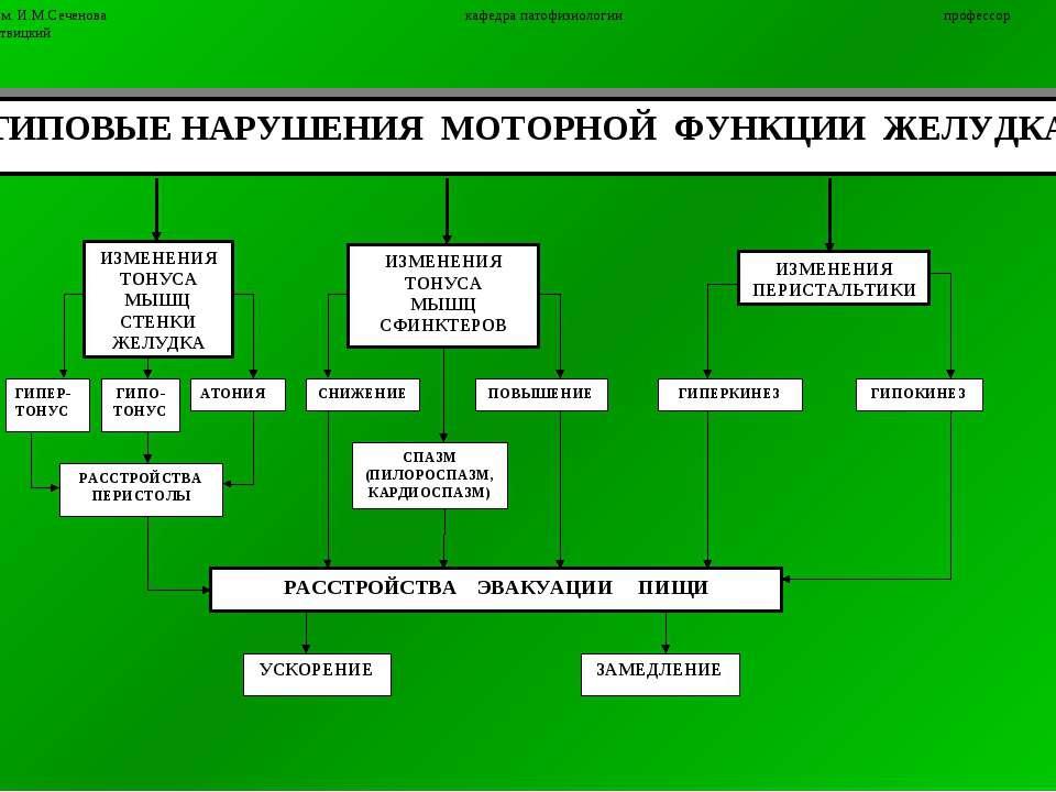 7 ММА им. И.М.Сеченова кафедра патофизиологии профессор П.Ф.Литвицкий