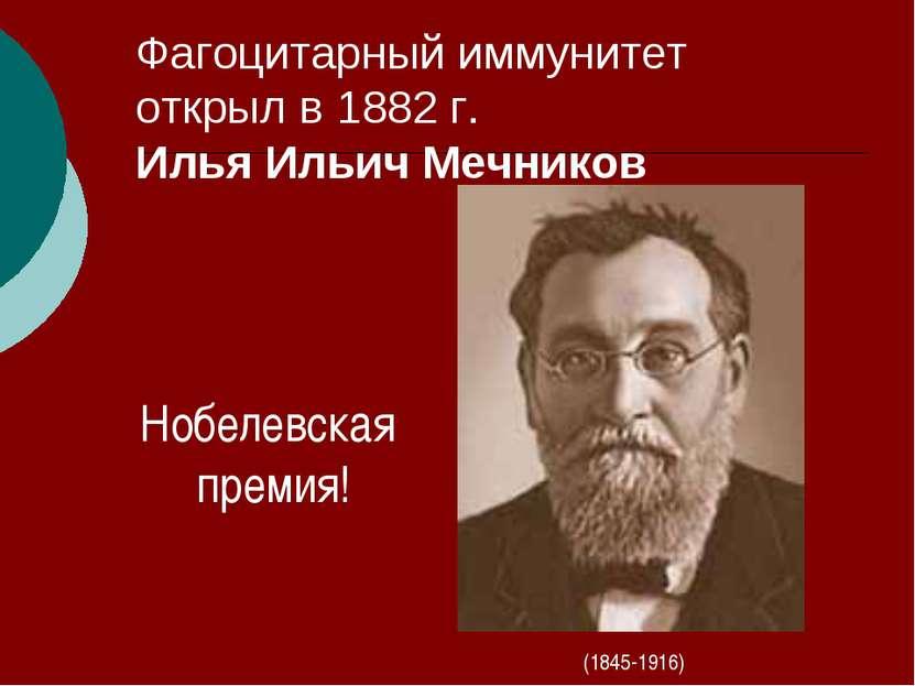 Фагоцитарный иммунитет открыл в 1882 г. Илья Ильич Мечников (1845-1916) Нобел...