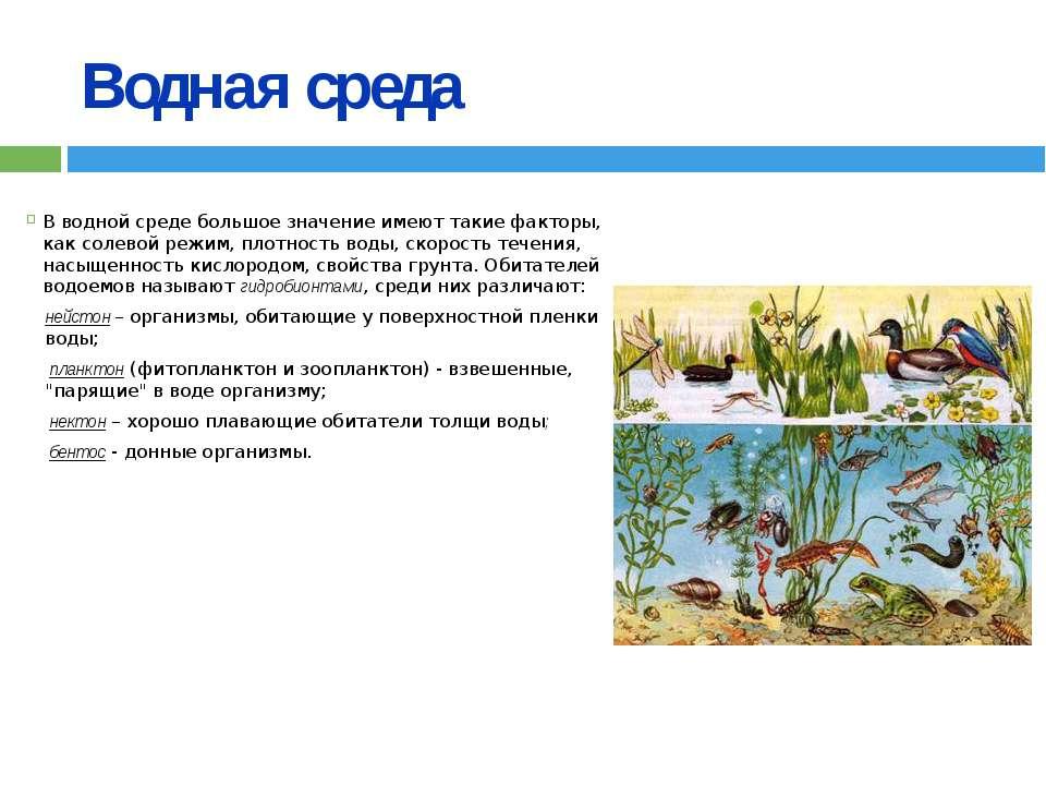 Водная среда В водной среде большое значение имеют такие факторы, как солевой...