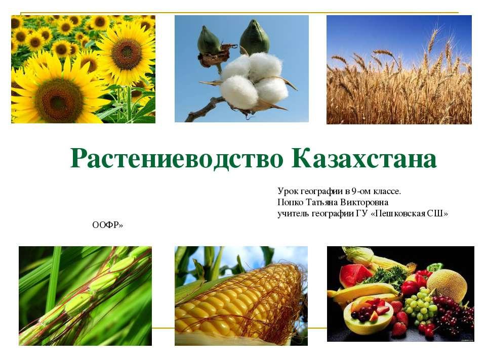 Растениеводство Казахстана Урок географии в 9-ом классе. Попко Татьяна Виктор...