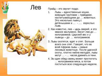 Лев Прайд – это звучит гордо. Львы – единственные кошки, живущие группами – п...
