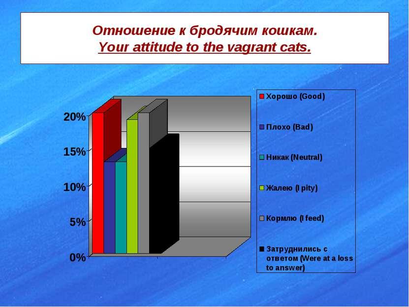 Отношение к бродячим кошкам. Your attitude to the vagrant cats.