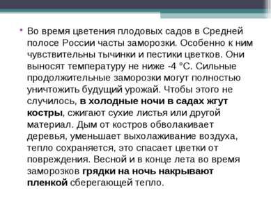 Во время цветения плодовых садов в Средней полосе России часты заморозки. Осо...
