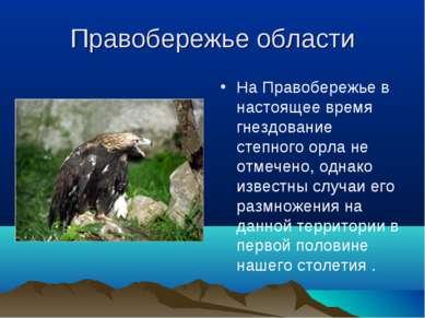 Правобережье области На Правобережье в настоящее время гнездование степного о...