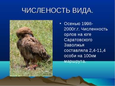 ЧИСЛЕНОСТЬ ВИДА. Осенью 1998-2000г.г. Численность орлов на юге Саратовского З...