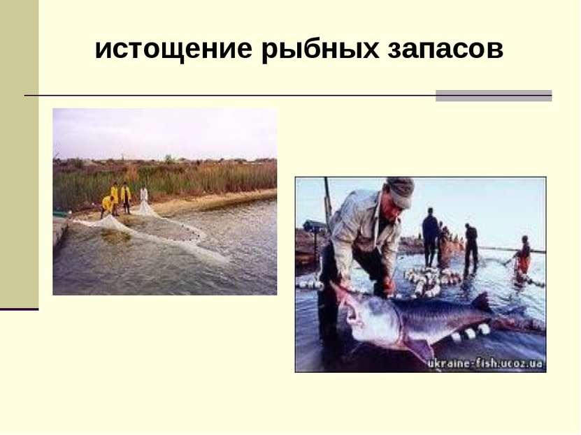 истощение рыбных запасов