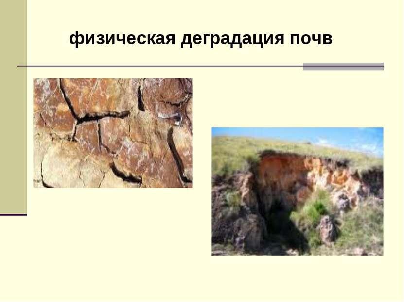 физическая деградация почв