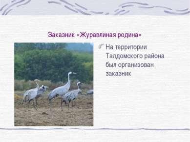 Заказник «Журавлиная родина» На территории Талдомского района был организован...