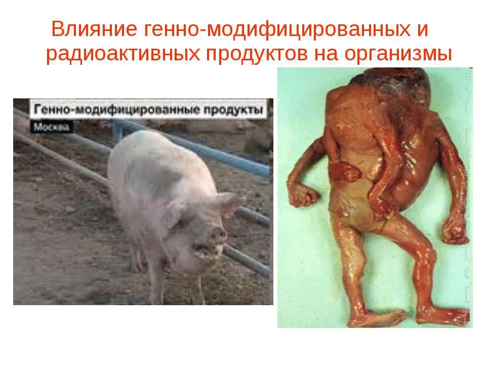Влияние генно-модифицированных и радиоактивных продуктов на организмы