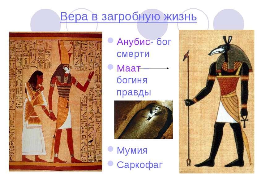 Вера в загробную жизнь Анубис- бог смерти Маат – богиня правды Мумия Саркофаг