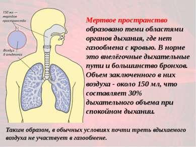 Мертвое пространство образовано теми областями органов дыхания, где нет газоо...