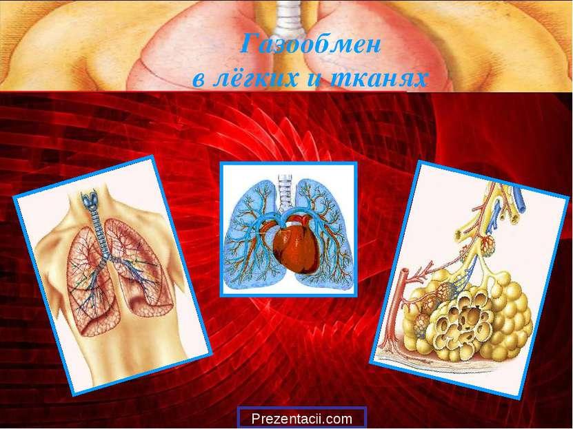 Газообмен в лёгких и тканях Prezentacii.com