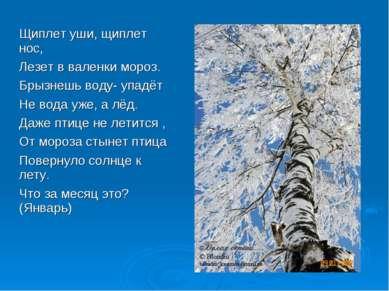 Щиплет уши, щиплет нос, Лезет в валенки мороз. Брызнешь воду- упадёт Не вода ...