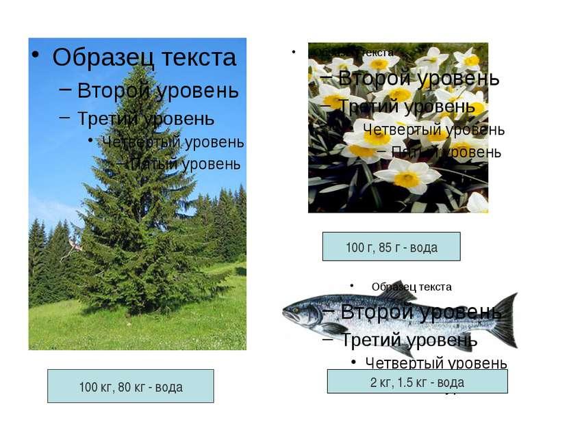 100 кг, 80 кг - вода 100 г, 85 г - вода 2 кг, 1.5 кг - вода