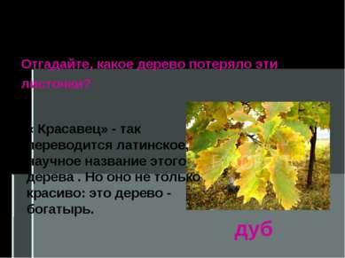Берёза, рябина, осина, тополь и орешник– лиственные растения. дуб Отгадайте, ...