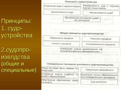 Принципы: 1. судо-устройства 2.судопро-извлдства (общие и специальные)