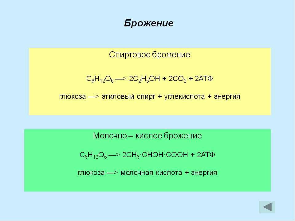 ПВК молочная кислота этиловый спирт Брожение