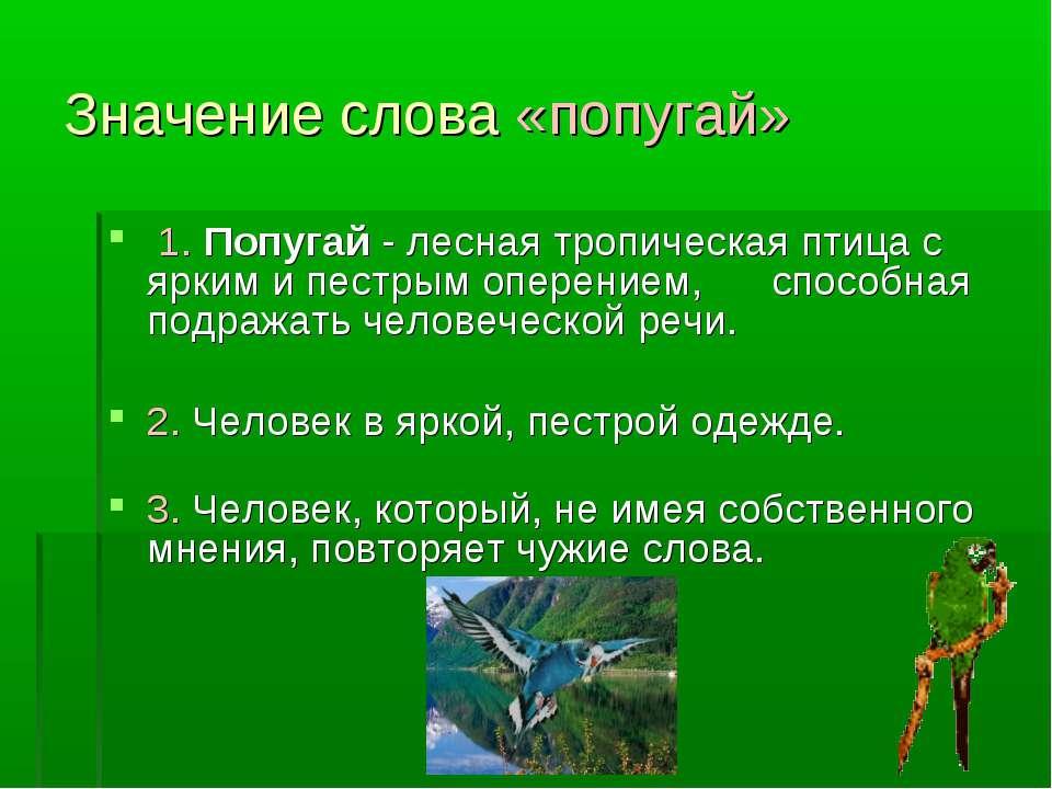Значение слова «попугай» 1. Попугай - лесная тропическая птица с ярким и пест...