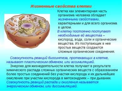 Клетка как элементарная часть организма человека обладает жизненными свойства...