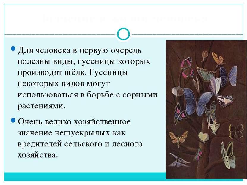 Значение в жизни человека Для человека в первую очередь полезны виды, гусениц...