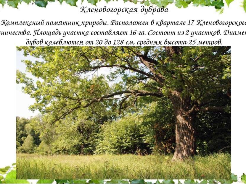 Кленовогорская дубрава Комплексный памятник природы. Расположен в квартале ...