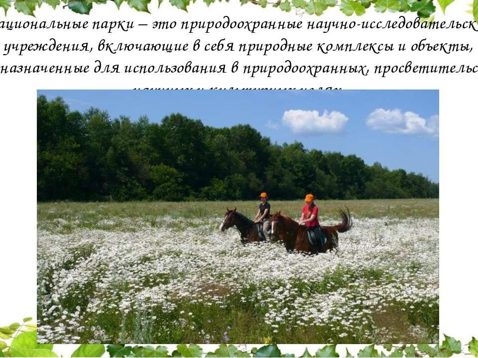 Национальные парки – это природоохранные научно-исследовательские учреждения,...
