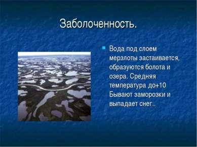 Заболоченность. Вода под слоем мерзлоты застаивается, образуются болота и озе...