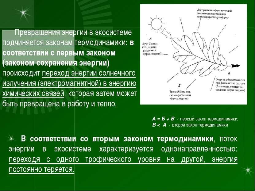 Превращения энергии в экосистеме подчиняется законам термодинамики: в соответ...