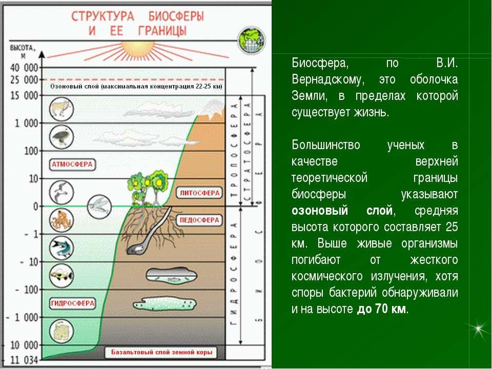 Биосфера, по В.И. Вернадскому, это оболочка Земли, в пределах которой существ...