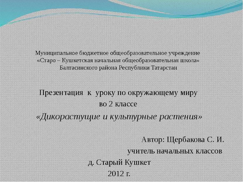 Муниципальное бюджетное общеобразовательное учреждение «Старо – Кушкетская на...