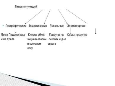 Географические Экологические Локальные Элементарные Лес в Подмосковье Клесты ...