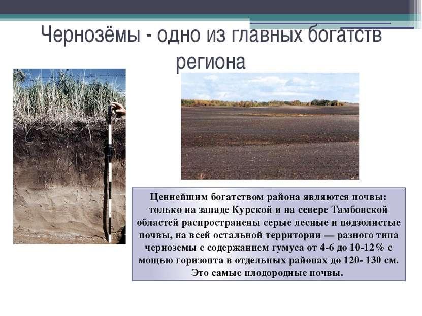Чернозёмы - одно из главных богатств региона Ценнейшим богатством района явля...
