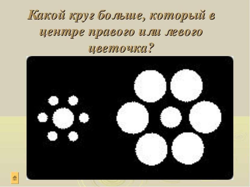 Какой круг больше, который в центре правого или левого цветочка?