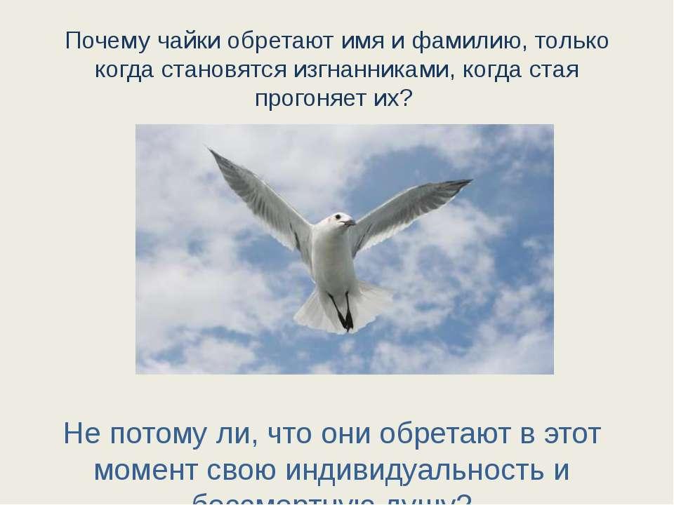 Почему чайки обретают имя и фамилию, только когда становятся изгнанниками, ко...