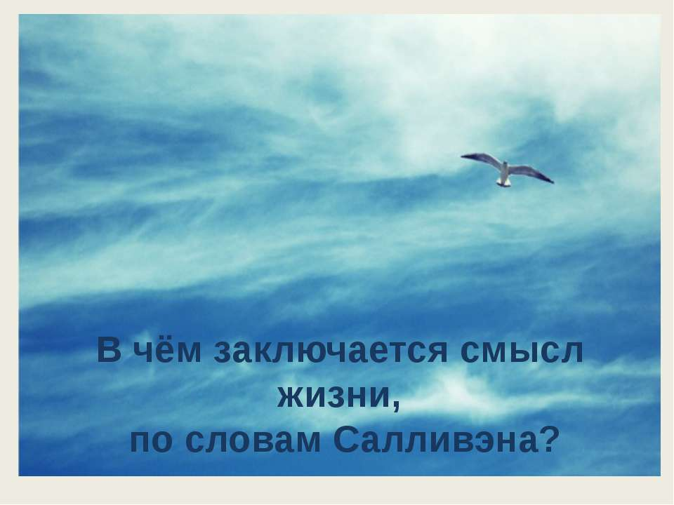 В чём заключается смысл жизни, по словам Салливэна?