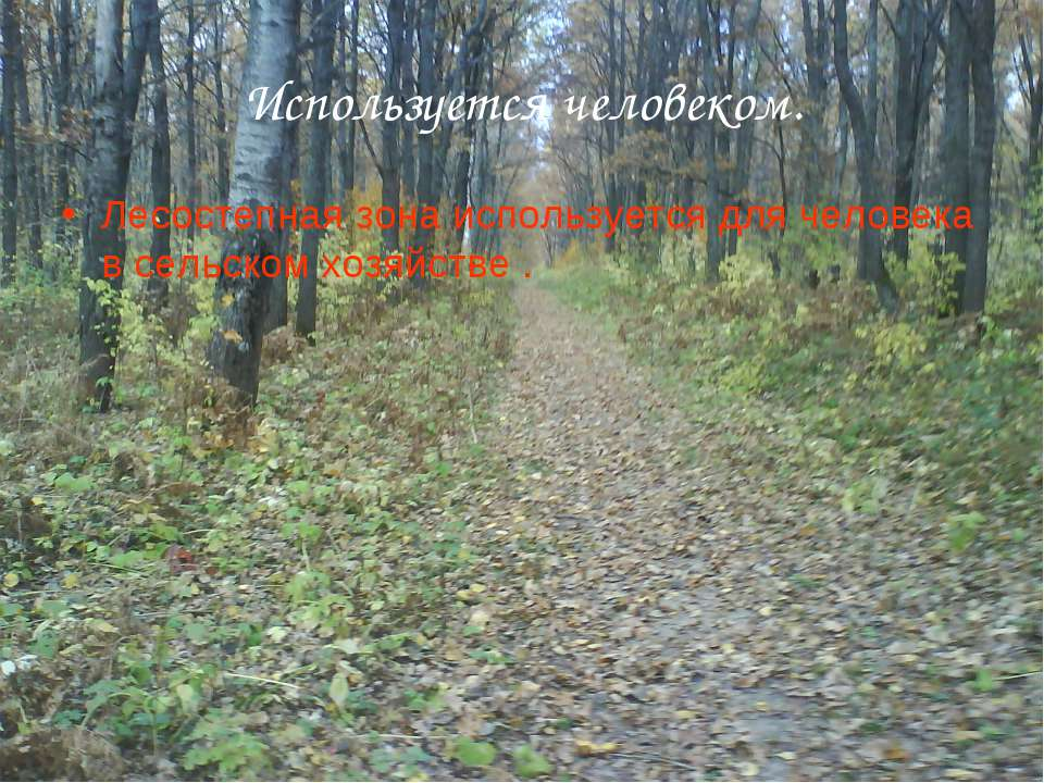 Используется человеком. Лесостепная зона используется для человека в сельском...