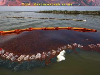 США: Мексиканский залив