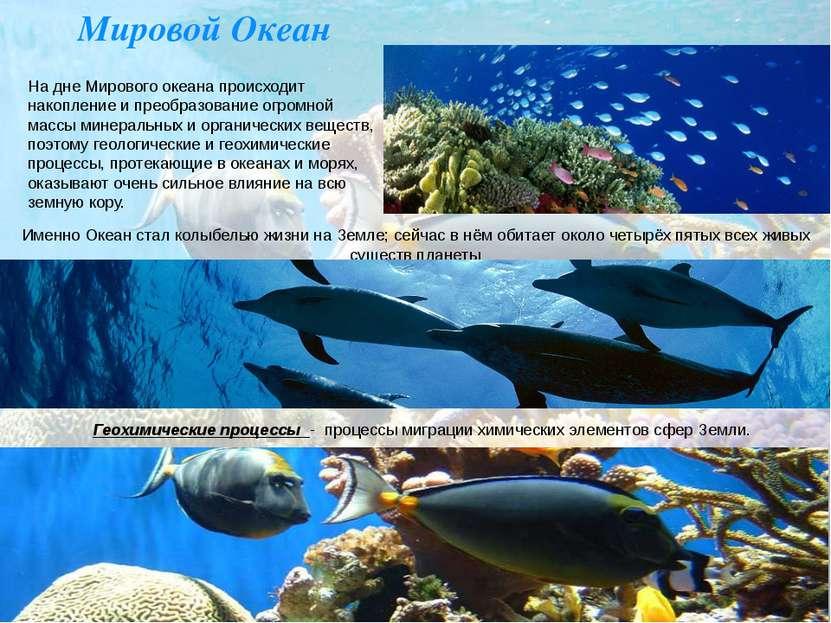Мировой Океан На дне Мирового океана происходит накопление и преобразование о...