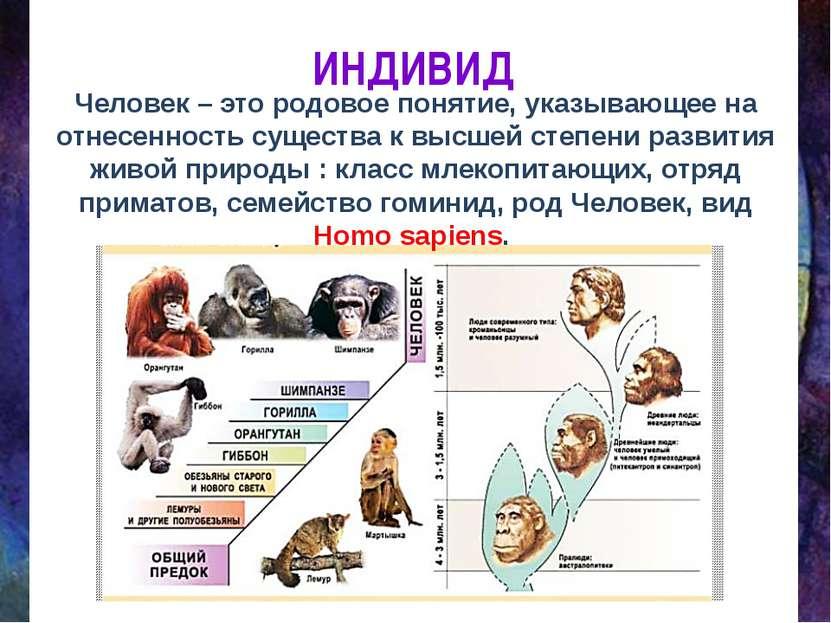 ИНДИВИД Человек – это родовое понятие, указывающее на отнесенность существа к...