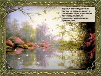 Деревья освобождаются от листвы не сразу, не вдруг, а постепенно. Идет подгот...