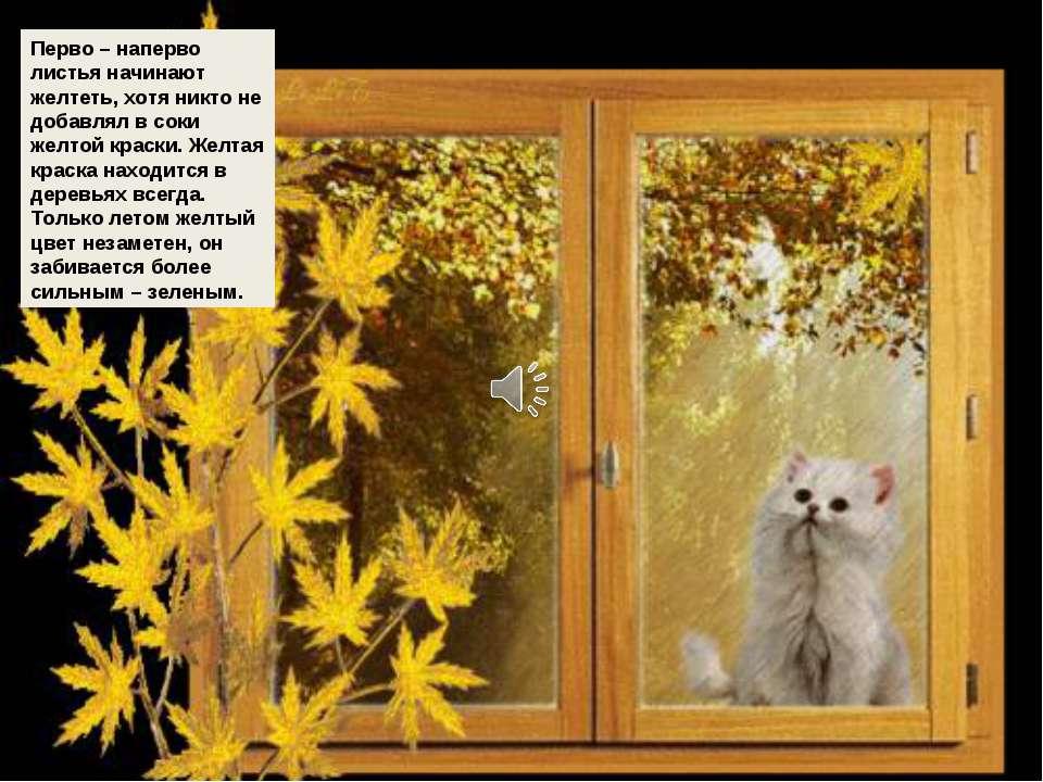 Перво – наперво листья начинают желтеть, хотя никто не добавлял в соки желтой...