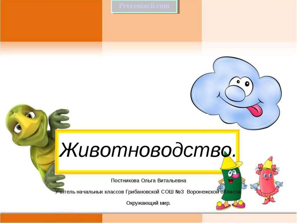 Животноводство. Постникова Ольга Витальевна Учитель начальных классов Грибано...