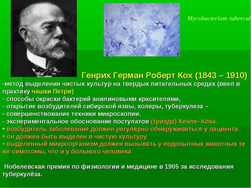 Mycobacterium tuberculosis Генрих Герман Роберт Кох (1843 – 1910) метод выдел...