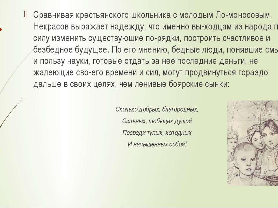 Сравнивая крестьянского школьника с молодым Ло моносовым, Некрасов выражает н...