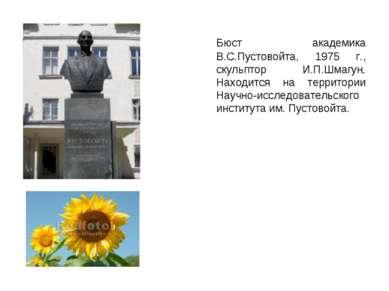 Бюст академика В.С.Пустовойта, 1975 г., скульптор И.П.Шмагун. Находится на те...
