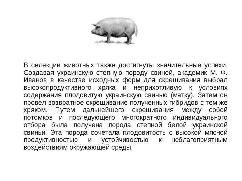 В селекции животных также достигнуты значительные успехи. Создавая украинскую...