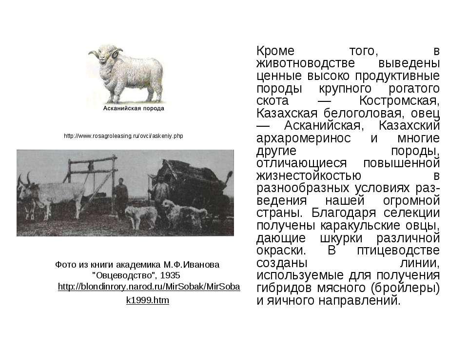 http://www.rosagroleasing.ru/ovci/askeniy.php Кроме того, в животноводстве вы...