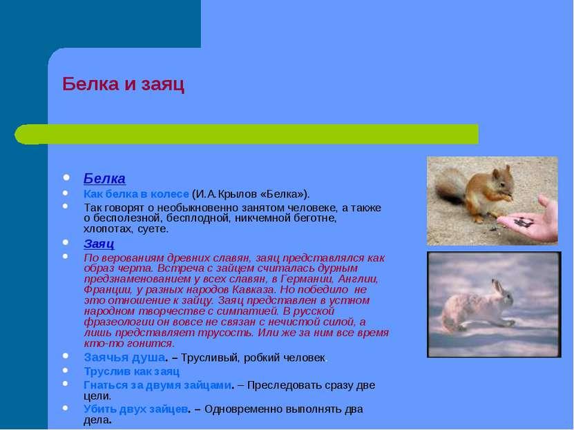 Белка и заяц Белка Как белка в колесе (И.А.Крылов «Белка»). Так говорят о нео...